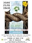 cineechangelintelligencedesarbres_intelligence-des-arbres-25.01.2018.jpg