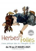 image Herbes_follesaffiche210305.jpg (0.9MB)