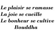 bnb_bnb_bonheur_plaisir.png