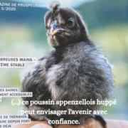 ecolieufribourgeois_confiance.png