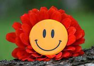 fahamu_smile_pixabay.jpg