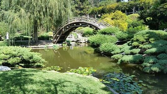 lesoptis_japanese-pont.jpg