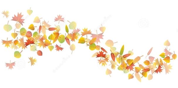 levauraisentransition_autumn-leaves-illustration-colorful-wave-white-background-32573252.jpg