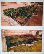 minijardin_schema-jardin.jpg