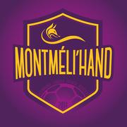 montmelihand_new-logo-montmeli-hand-fond-violet-copie.jpg
