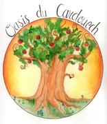 oasisdecardouech_logo-oasis-du-cardouech.jpg