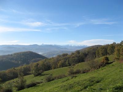 oasisdecardouech_top-vue.jpg