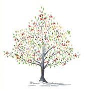 ojardinlabastide_arbre_de_vie.jpg