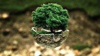 projetsecocitoyenscarsoclyceefondettes_environmental-protection-683437_1280.jpg