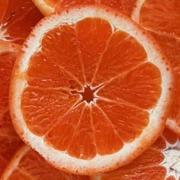 testym_grapefruit-slice-332-332.jpg