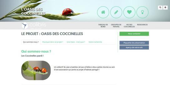 Coccinelles Lien vers: https://colibris-wiki.org/coccinelle/
